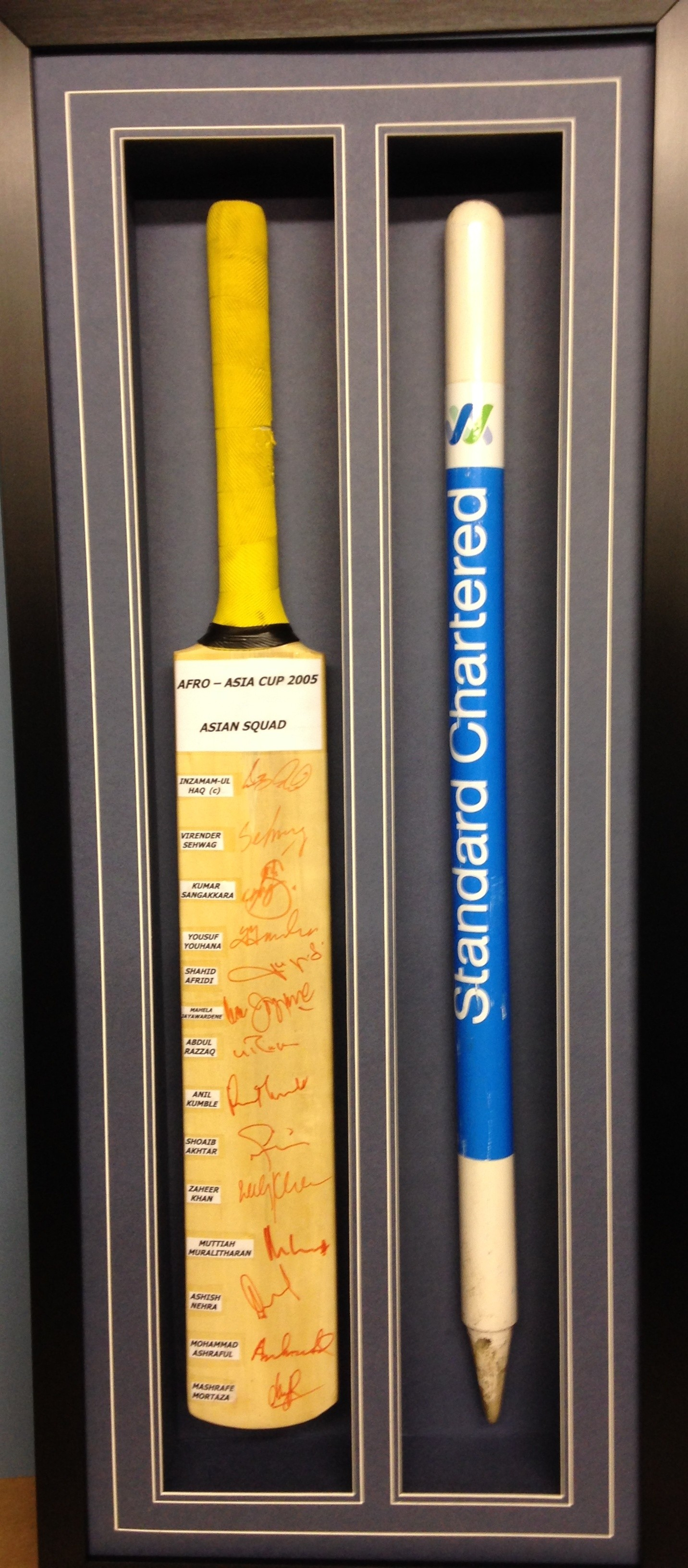 Afro Asia Stump and Signed Bat