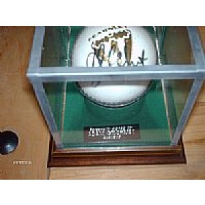 Cricket Ball Glass Display Case