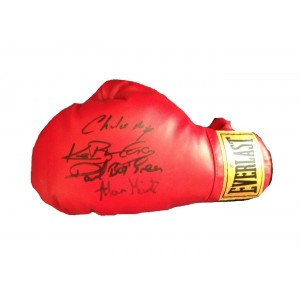 British Multi Signed Boxing Glove