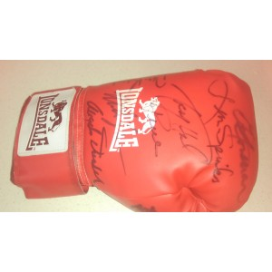 Multi Signed Heavyweight Champions Glove