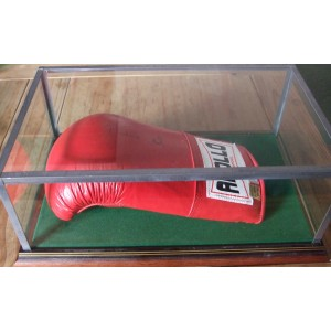 Small Boxing Glove Case