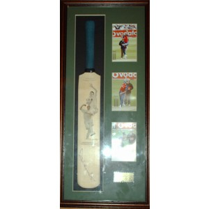 Steve Harmison Signed Mini Bat